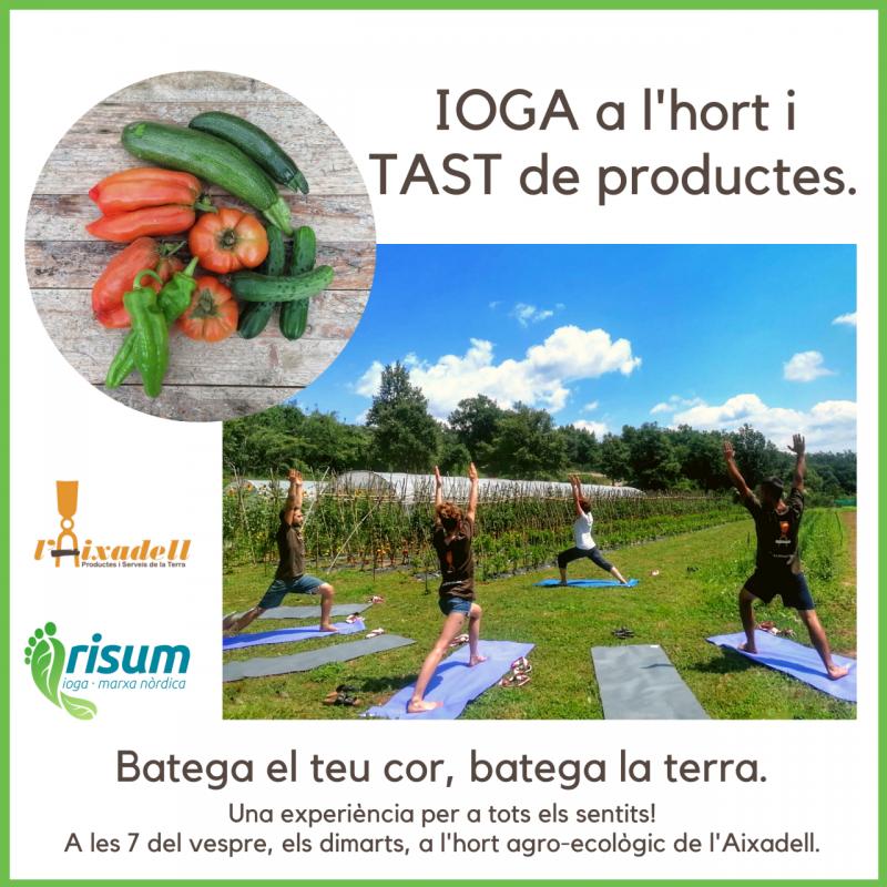 Risum, yoga and nordic walking