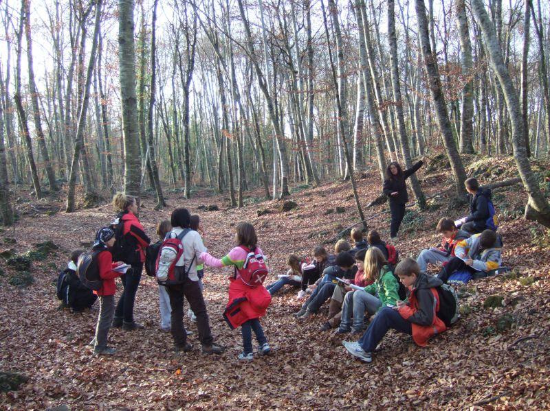 Tosca, Serveis Ambientals d'Educació i Turisme, SL